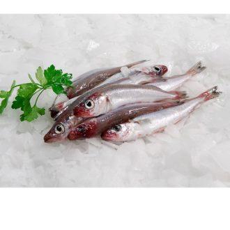 mairas-Rosas-pescadoacasa
