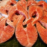 rodaja de salmon – copia