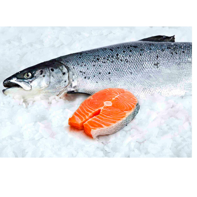 salmon-entero-3kg-pescadoacasa