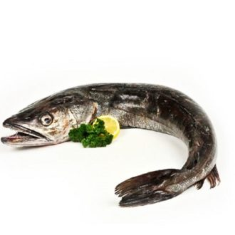 merluza-pincho-2kg-pescadoacasa