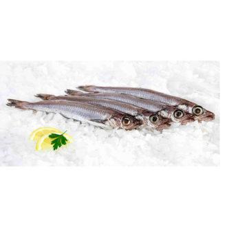 mairas-Cádiz pescadoacasa