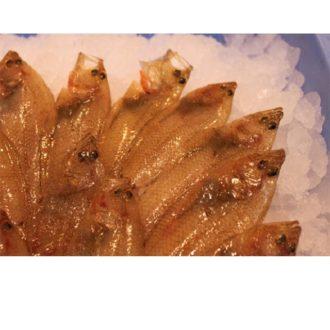 pelaya-pescadoacasa