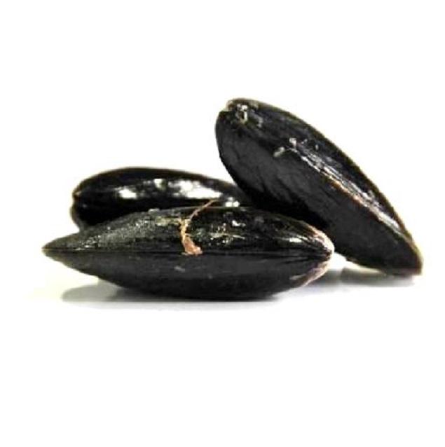 mejillon-roca-pescadoacasa-jpg