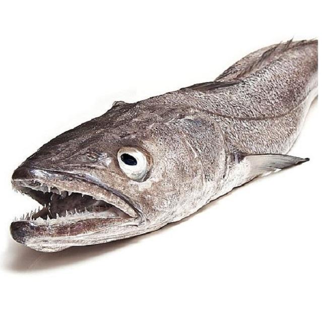 merluza-arrastre-2kg-pescadoacasa