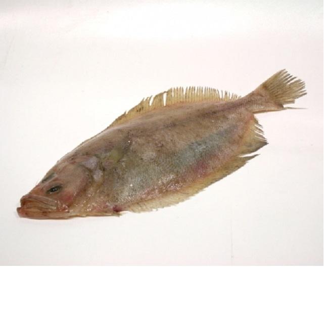 gallo-1kr-pescadoacasa-jpg.
