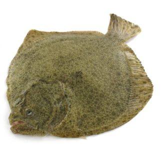 rodaballo-1kg-pescadoacasa