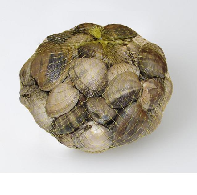 ameixa-japonica-bolsa