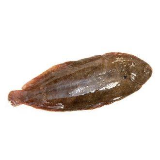lenguado-500gr-pescadoacasa-jpg.
