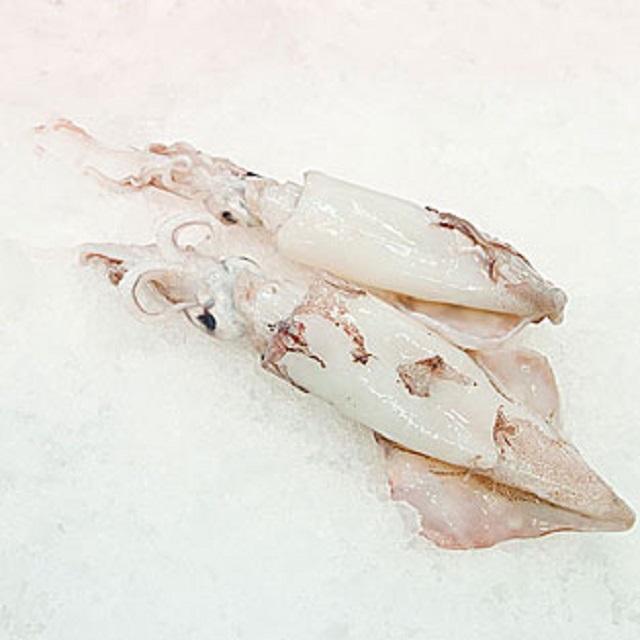 calamar-nacional-pequeño-pescadoacasa-jpg