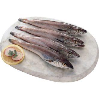pijota-playa-vilanova-pescadoacasa