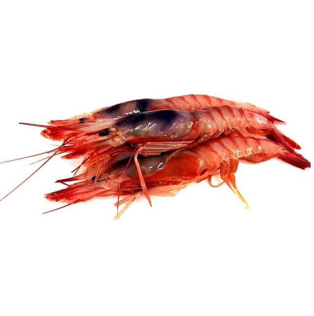 gamba-roja-huelva-extra-grande-pescadoacasa