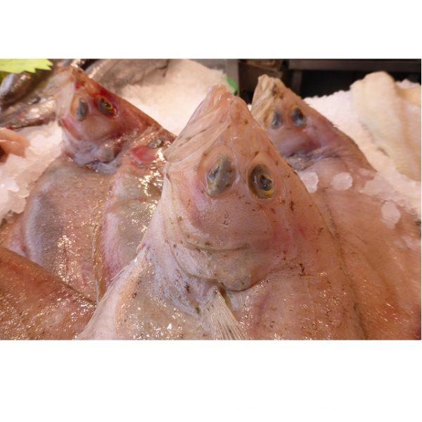 gallo-1kg-pescadoacasa