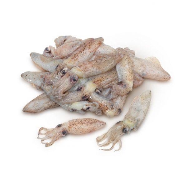 chipiron-puntilla-china-pescadoacasa-jpg