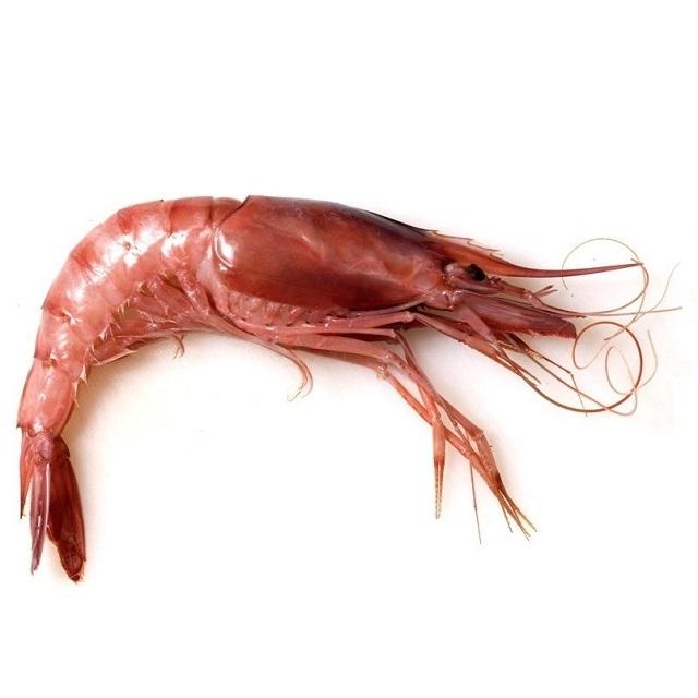 gamba_alistada_30/35-pescadoacasa