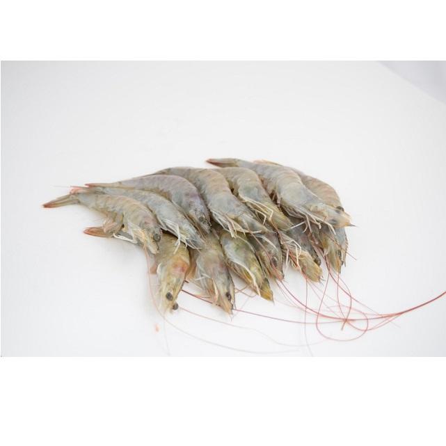 langostino-crudo-pescadoacasa