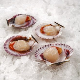 zamburinas-pescadoacasa
