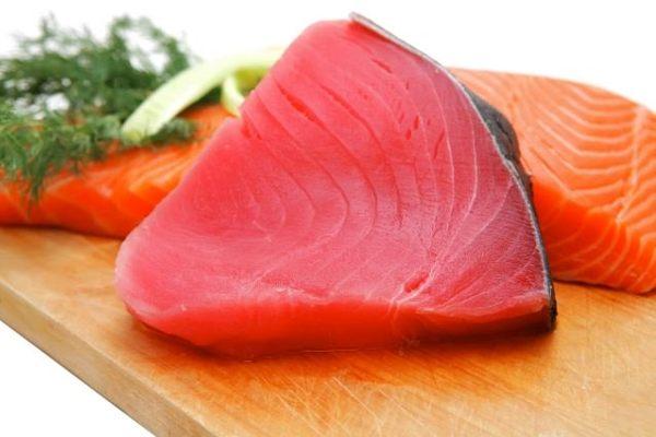 El atún rojo está en peligro de extinción