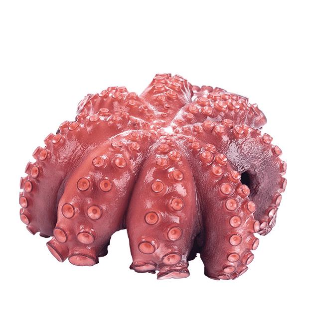 pulpo-cocido-pescadoacasa