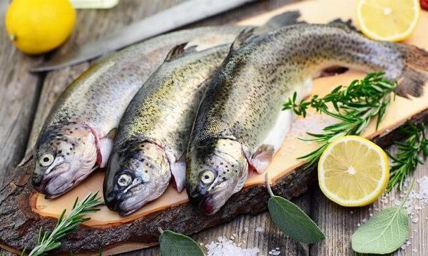 Cómo reconocer el pescado gallego fresco