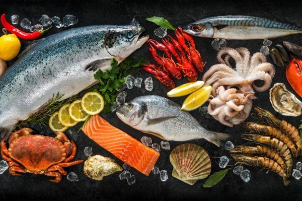 ¿Cómo se mantiene fresco el pescado?